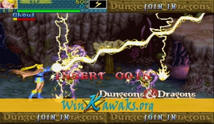Dungeons and Dragons: Shadow over Mystara (Hispanic 960223) Screenshot