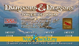 Dungeons and Dragons: Tower of Doom (Asia 940412)