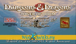 Dungeons and Dragons: Tower of Doom (Hispanic 940412)