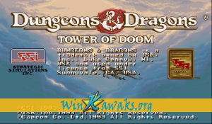 Dungeons and Dragons: Tower of Doom (Hispanic 940113)