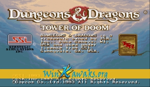 Dungeons and Dragons: Tower of Doom (US 940125)