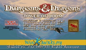 Dungeons and Dragons: Tower of Doom (US 940113)