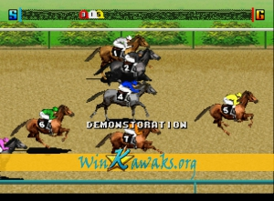 Jockey Grandprix Screenshot