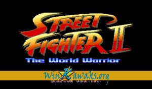 Street Fighter II - The World Warrior (US 911101)